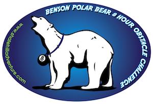 EURO - Polar Bear- resize