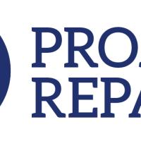 projectrepatlogo